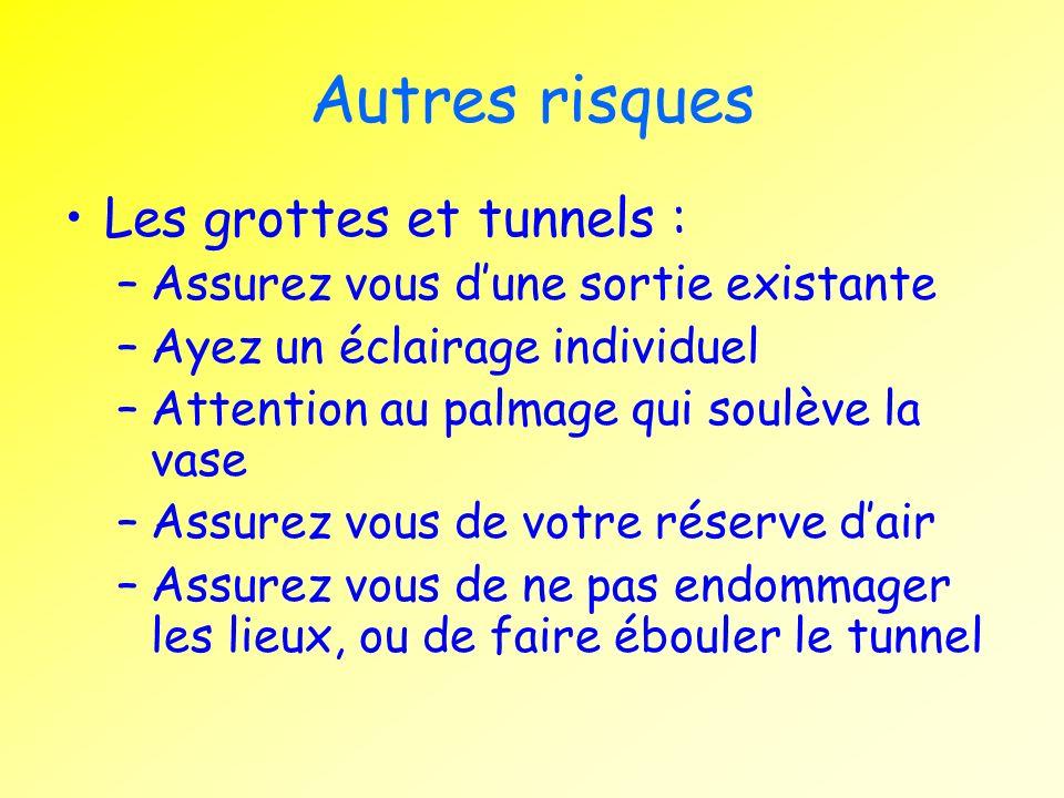 Autres risques Les grottes et tunnels :
