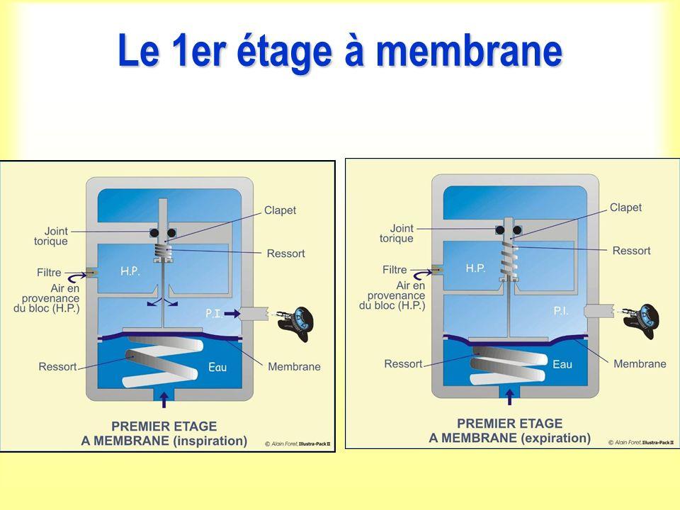 Le 1er étage à membrane