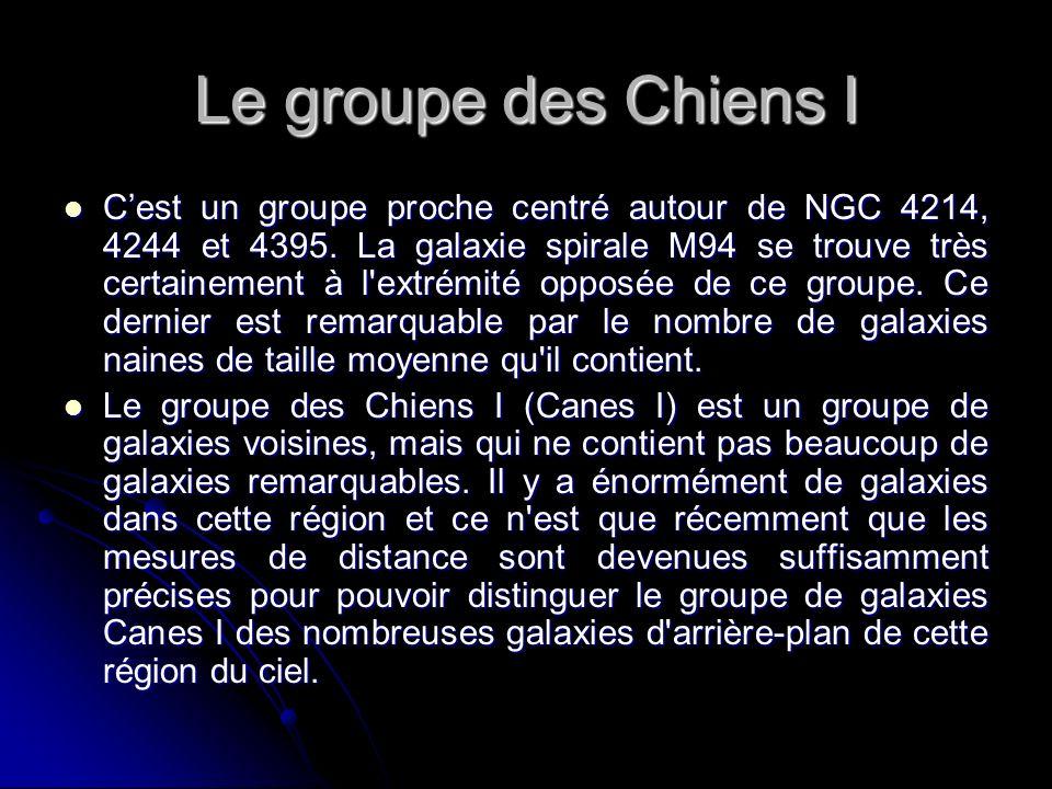 Le groupe des Chiens I