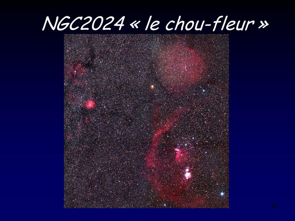 NGC2024 « le chou-fleur »