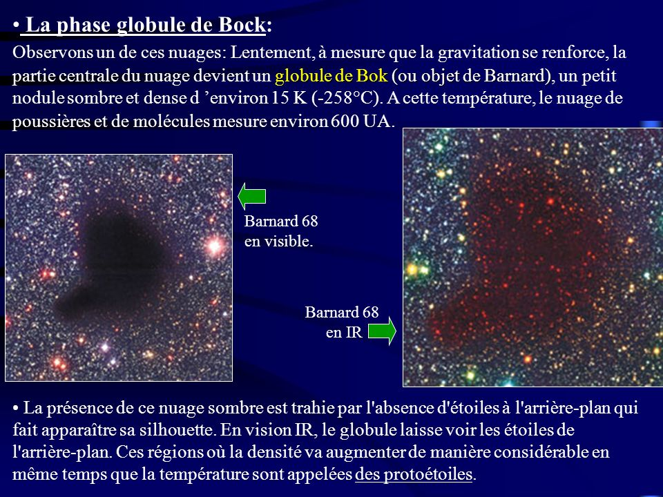 La phase globule de Bock: Observons un de ces nuages: Lentement, à mesure que la gravitation se renforce, la partie centrale du nuage devient un globule de Bok (ou objet de Barnard), un petit nodule sombre et dense d 'environ 15 K (-258°C). A cette température, le nuage de poussières et de molécules mesure environ 600 UA.