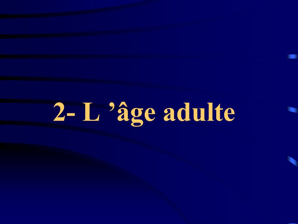 2- L 'âge adulte