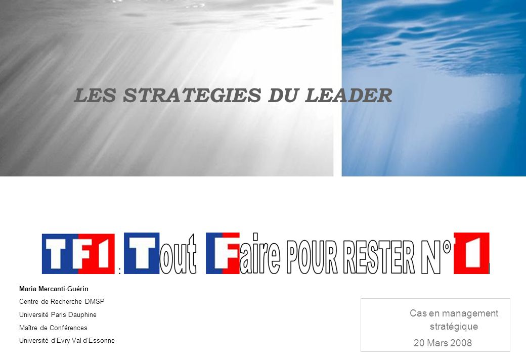 LES STRATEGIES DU LEADER