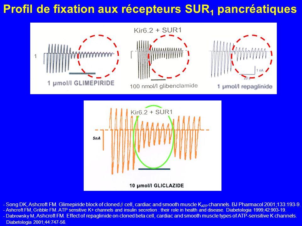 Profil de fixation aux récepteurs SUR1 pancréatiques