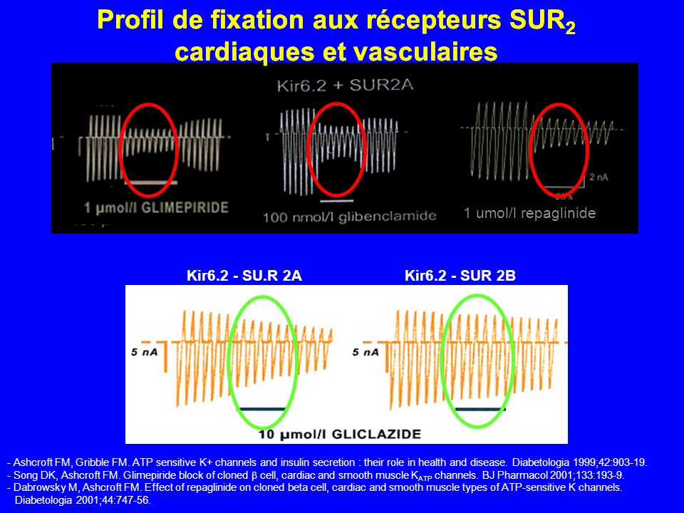 Profil de fixation aux récepteurs SUR2 cardiaques et vasculaires