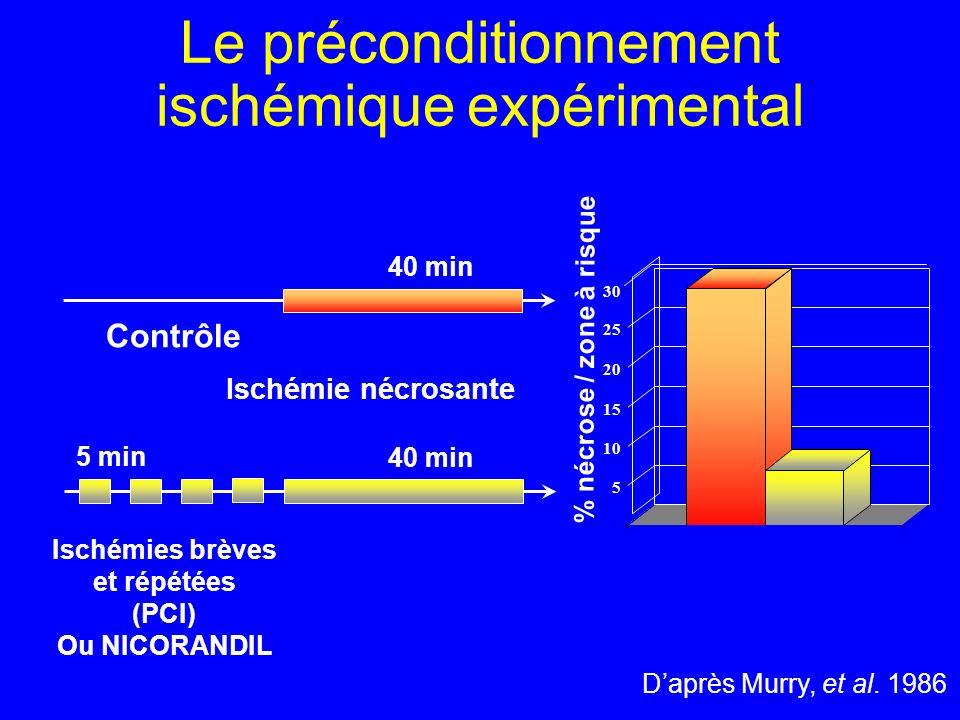 Le préconditionnement ischémique expérimental