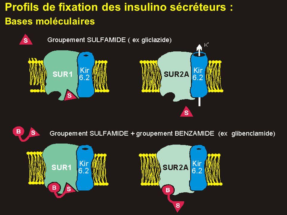Profils de fixation des insulino sécréteurs :
