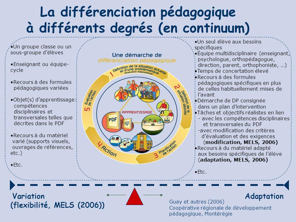 La différenciation pédagogique à différents degrés (en continuum)