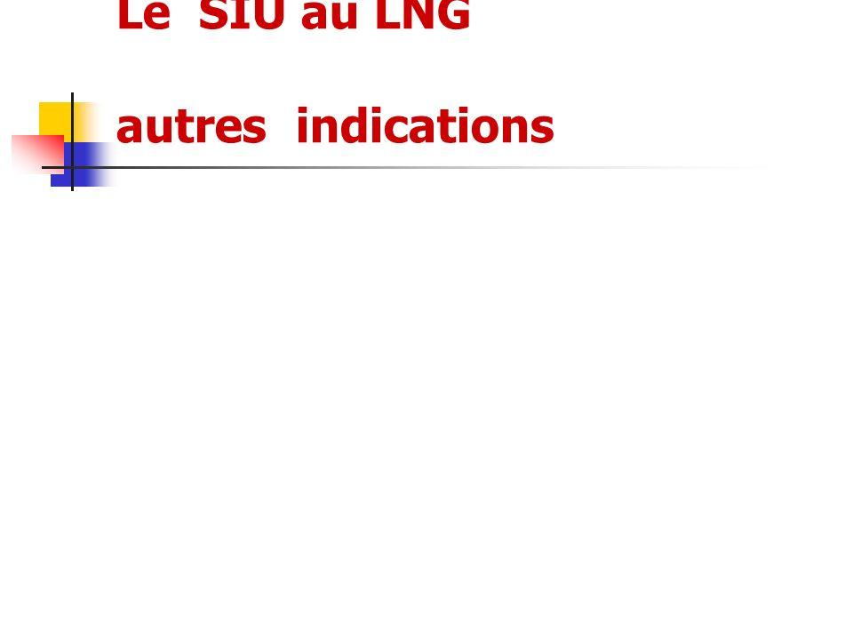 Le SIU au LNG autres indications