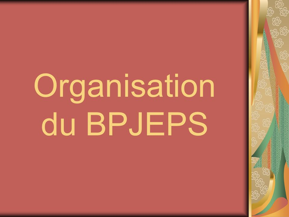 Organisation du BPJEPS