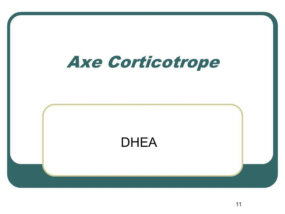 Axe Corticotrope DHEA