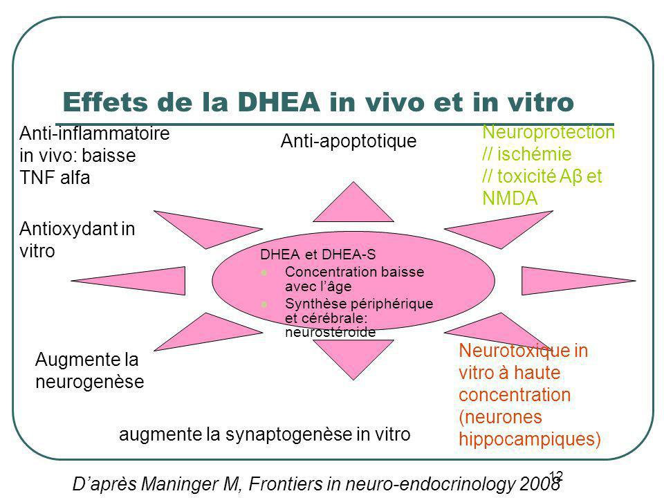 Effets de la DHEA in vivo et in vitro