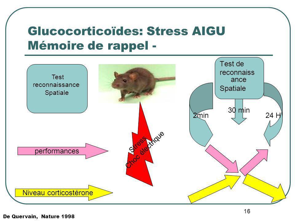 Glucocorticoïdes: Stress AIGU Mémoire de rappel -