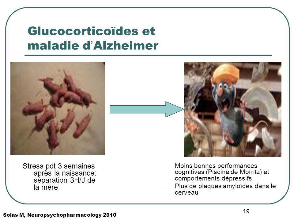 Glucocorticoïdes et maladie d'Alzheimer