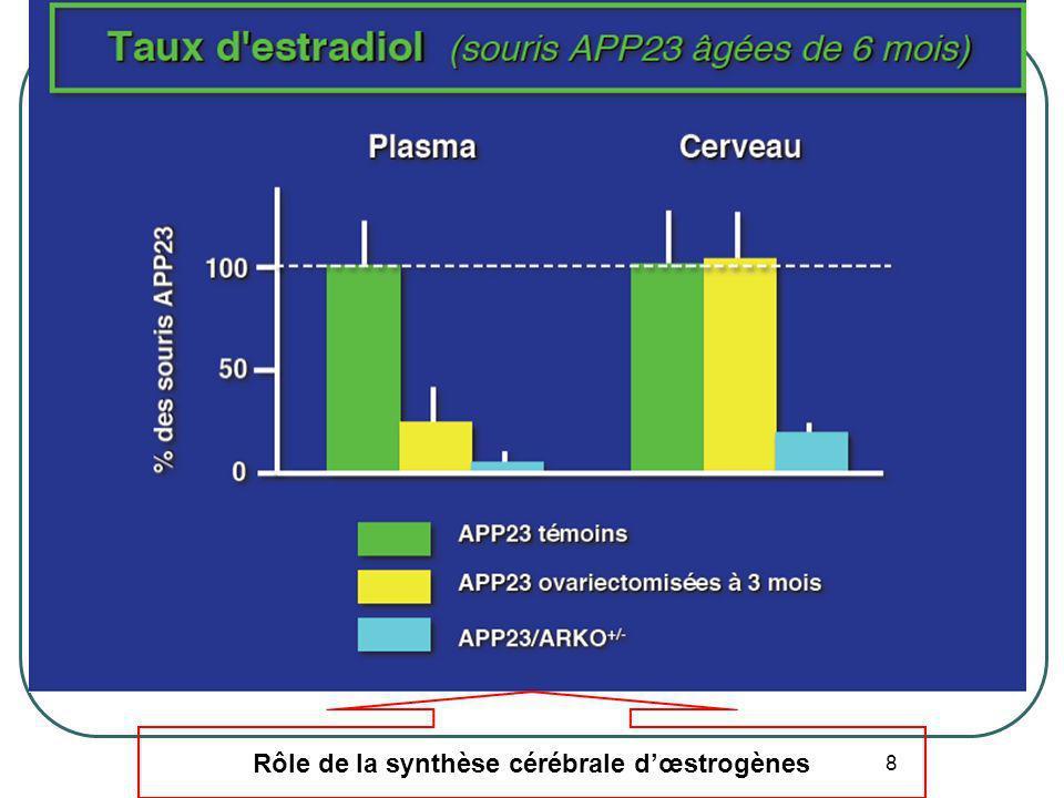 Rôle de la synthèse cérébrale d'œstrogènes