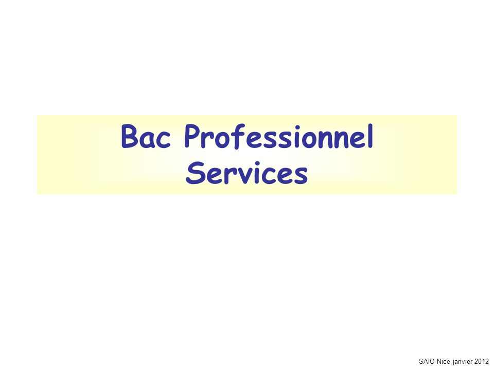 Bac Professionnel Services