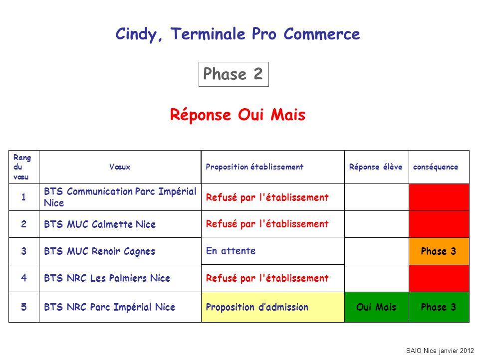 Cindy, Terminale Pro Commerce