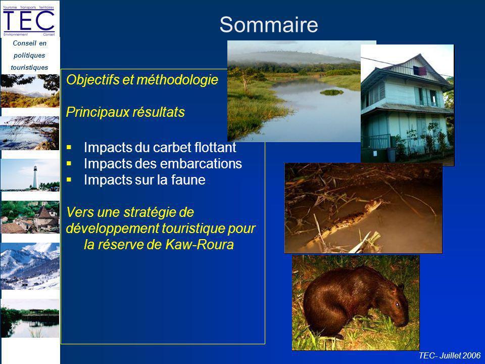 Sommaire Objectifs et méthodologie Principaux résultats
