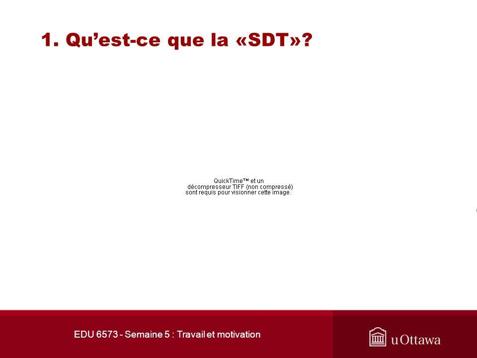 EDU 6573 - Semaine 5 : Travail et motivation