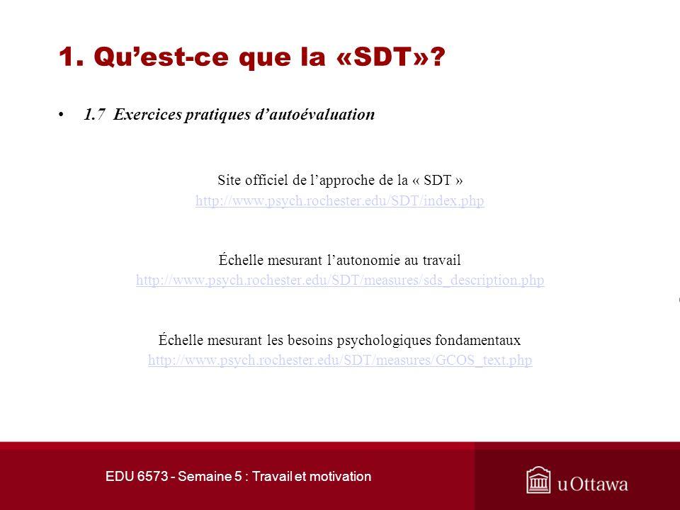 1. Qu'est-ce que la «SDT» 1.7 Exercices pratiques d'autoévaluation
