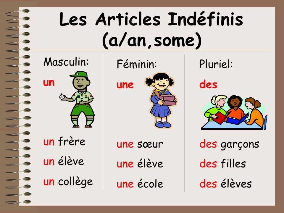 Les Articles Indéfinis (a/an,some)