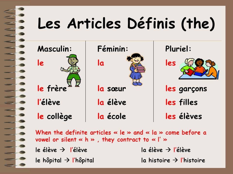 Les Articles Définis (the)