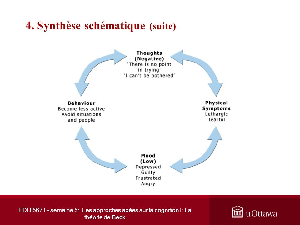 4. Synthèse schématique (suite)