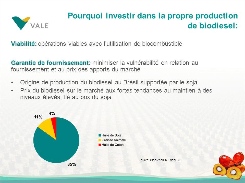Pourquoi investir dans la propre production de biodiesel: