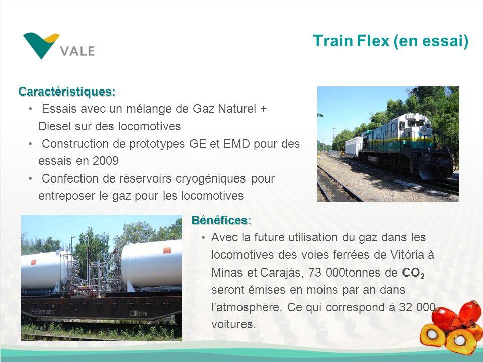 Train Flex (en essai) Caractéristiques: