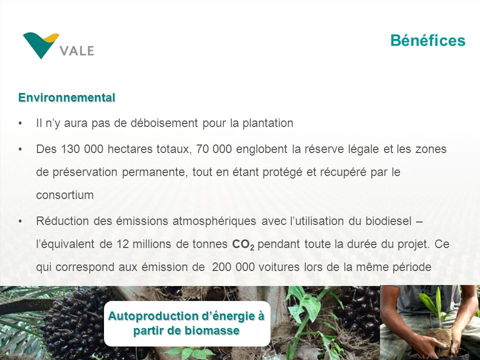 Autoproduction d'énergie à partir de biomasse