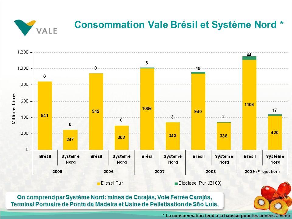 Consommation Vale Brésil et Système Nord *