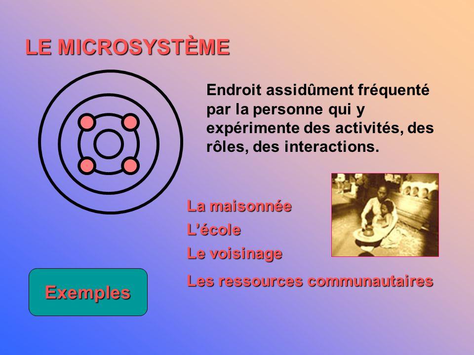 LE MICROSYSTÈME Exemples