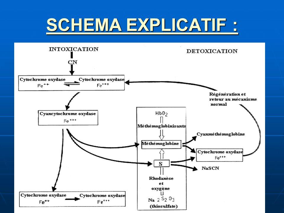 SCHEMA EXPLICATIF :