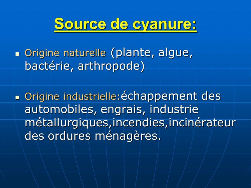 Source de cyanure: Origine naturelle (plante, algue, bactérie, arthropode)
