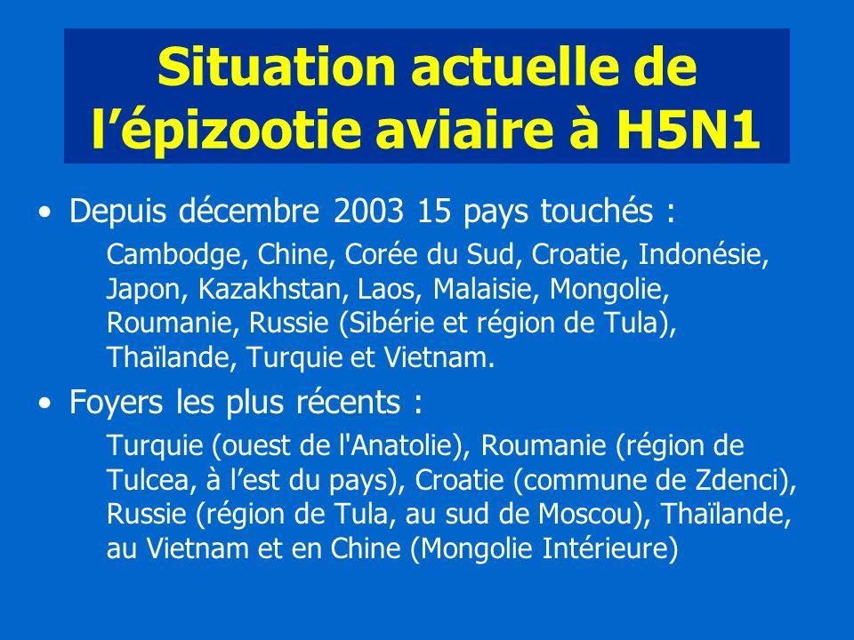 Situation actuelle de l'épizootie aviaire à H5N1