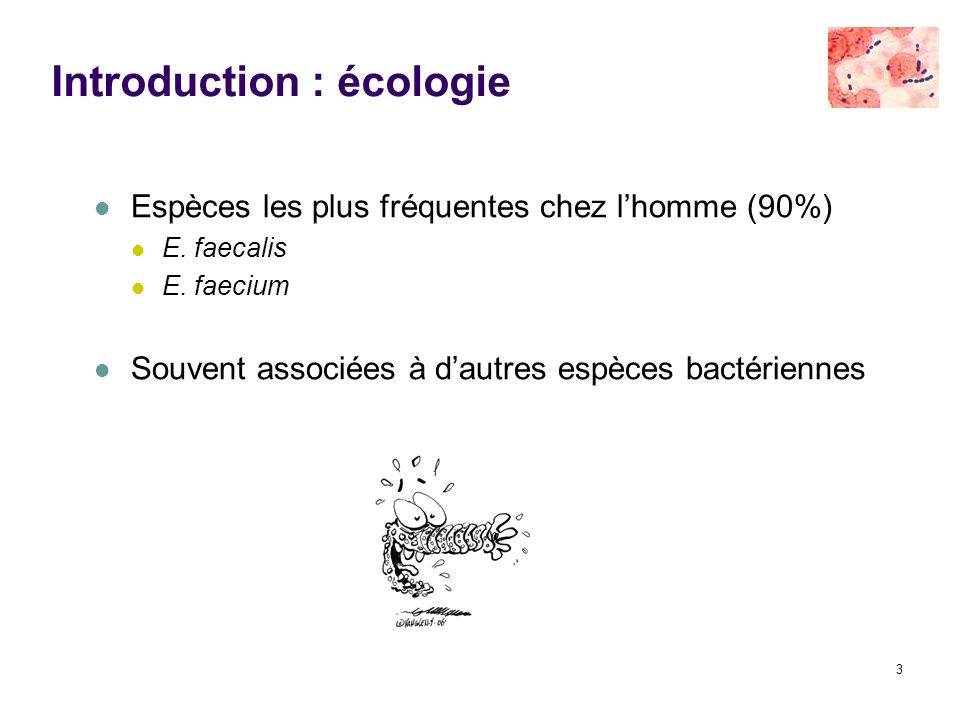 Introduction : écologie