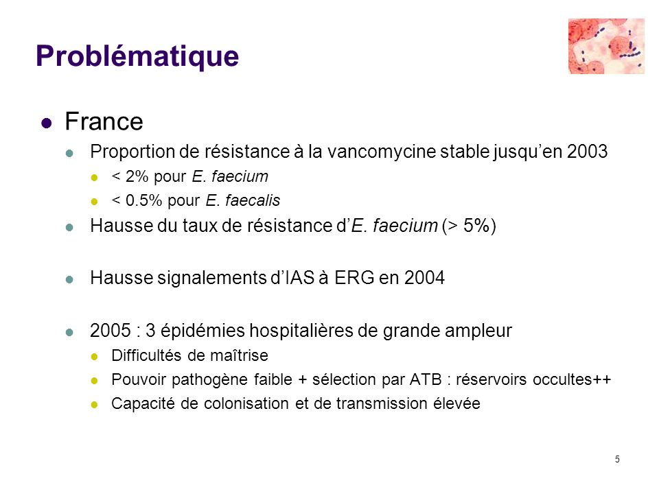 Problématique France. Proportion de résistance à la vancomycine stable jusqu'en 2003. < 2% pour E. faecium.