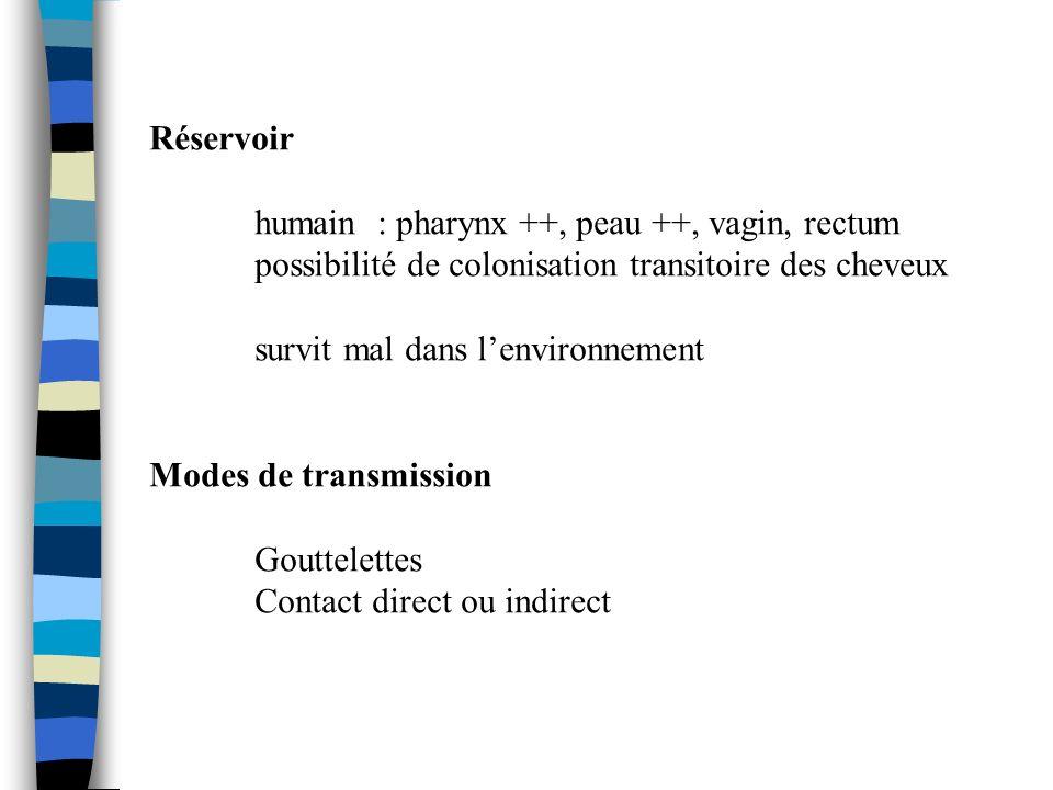 Réservoir humain : pharynx ++, peau ++, vagin, rectum. possibilité de colonisation transitoire des cheveux.