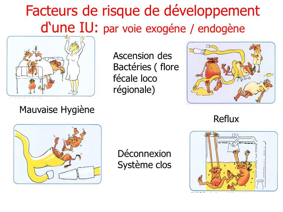 Facteurs de risque de développement d'une IU: par voie exogéne / endogène
