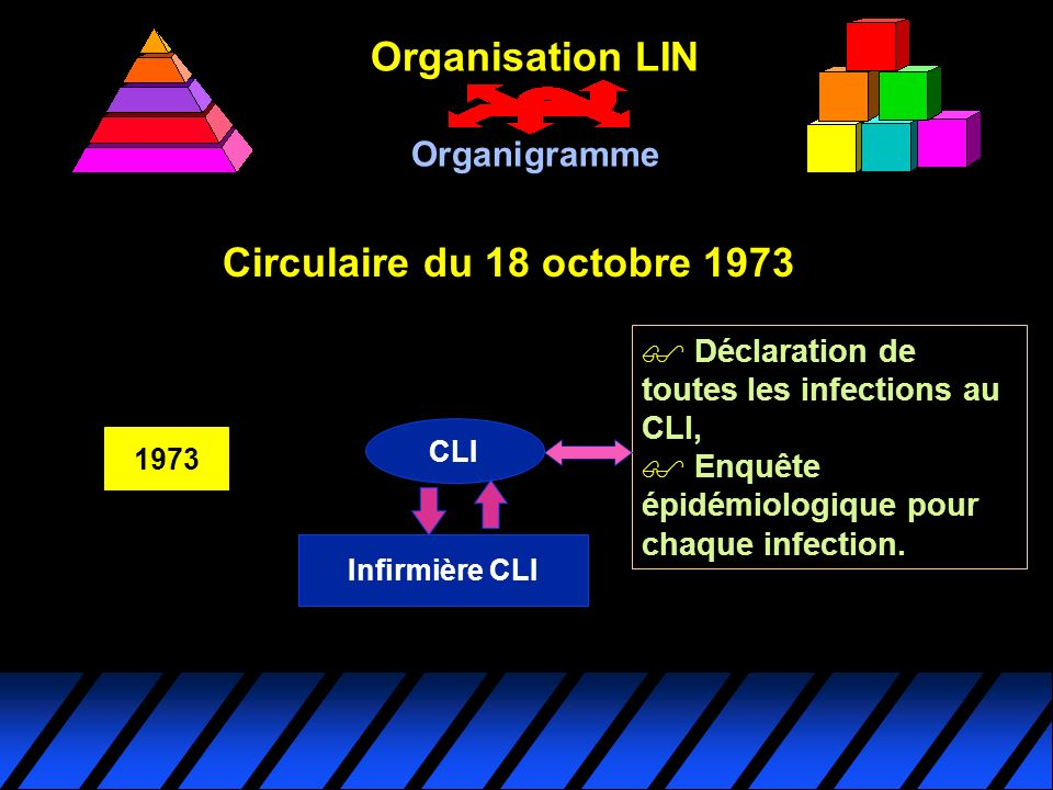 Organisation LIN Circulaire du 18 octobre 1973