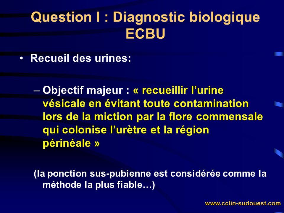 Question I : Diagnostic biologique ECBU