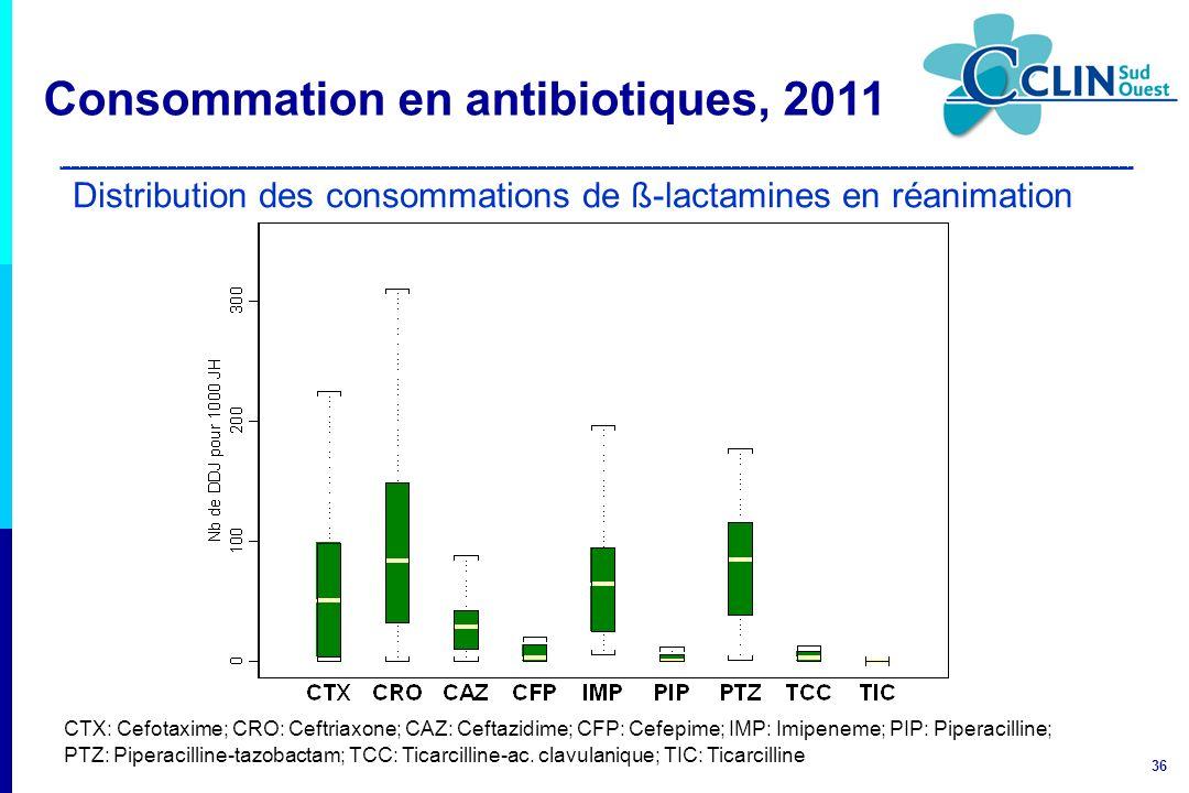 Distribution des consommations de ß-lactamines en réanimation