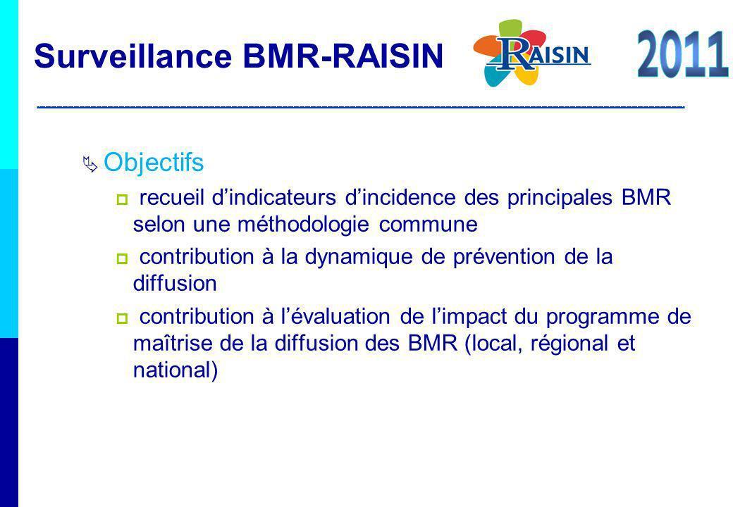 Surveillance BMR-RAISIN 2011