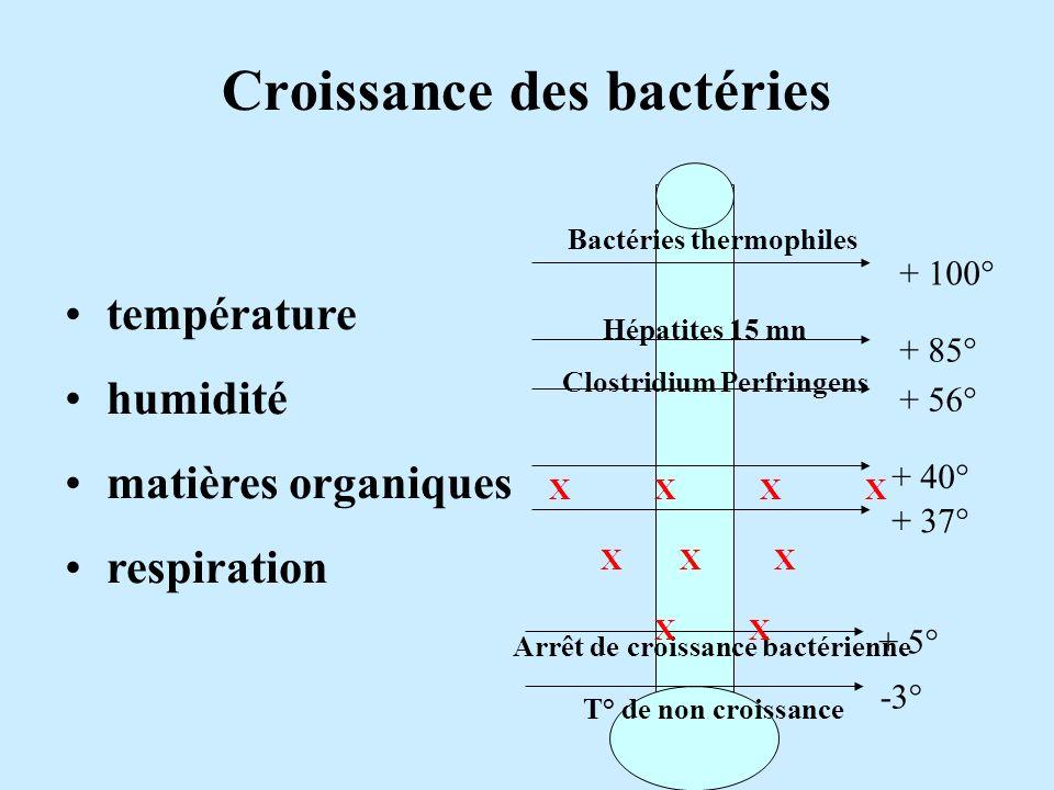 Croissance des bactéries