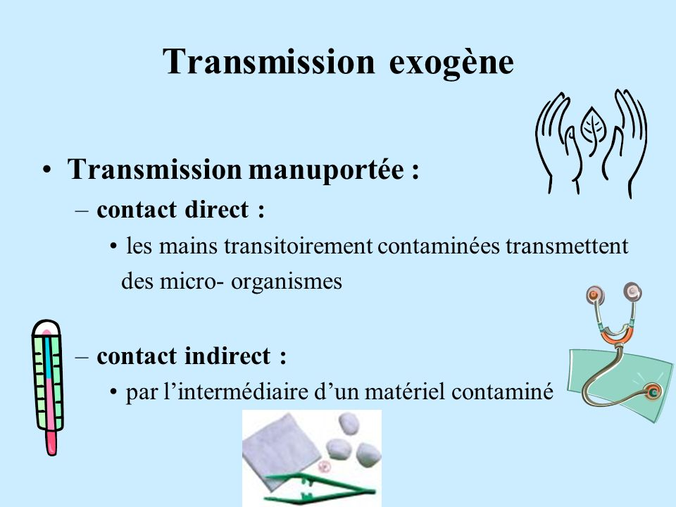 Transmission exogène Transmission manuportée : contact direct :