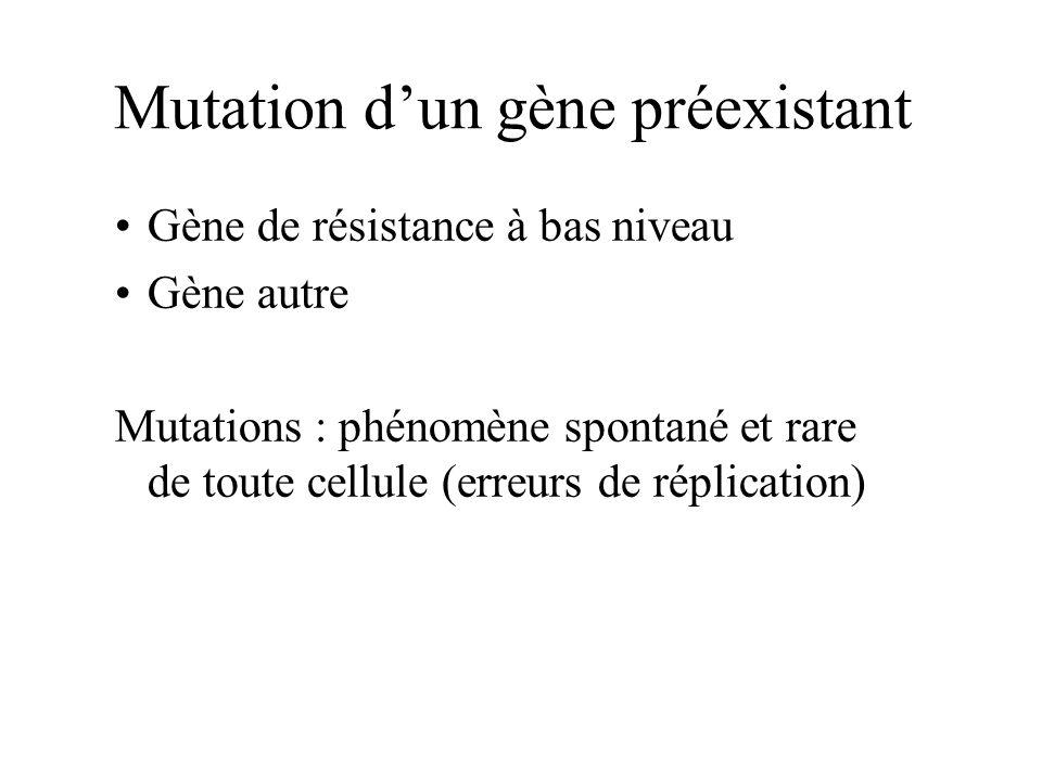 Mutation d'un gène préexistant