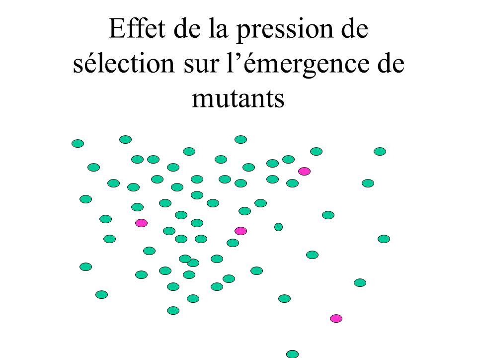 Effet de la pression de sélection sur l'émergence de mutants