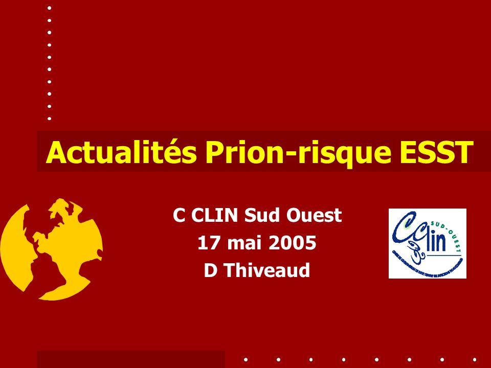 C CLIN Sud Ouest 17 mai 2005 D Thiveaud
