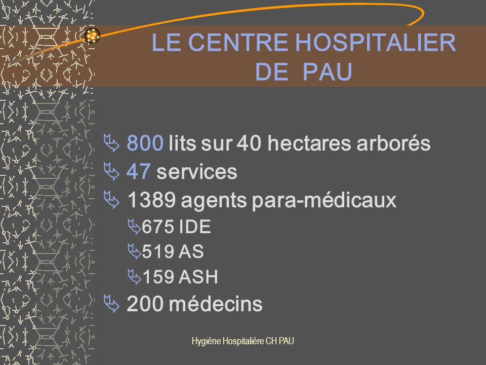 LE CENTRE HOSPITALIER DE PAU