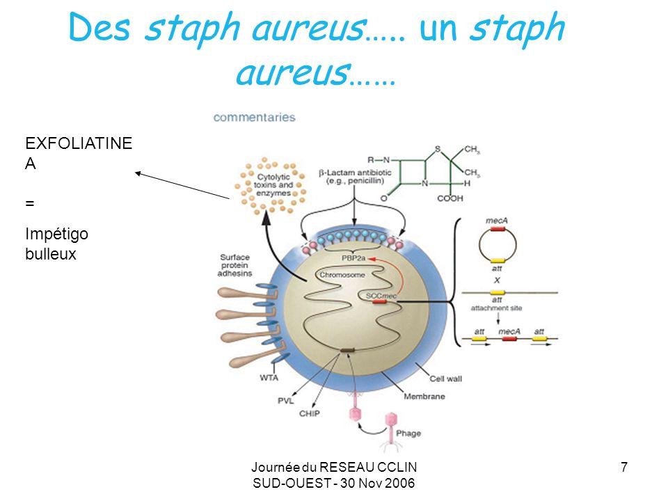 Des staph aureus….. un staph aureus……